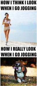 joggingdog
